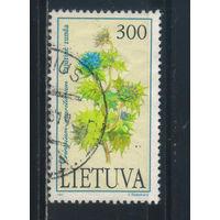 Литва 2-я Респ 1992 Цветы Чертополох #500