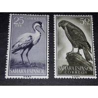 Испанская Сахара 1959 Фауна Птицы 2 чистые марки