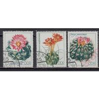 1983 г. Цветущие кактусы. ГДР. гаш. Флора (АНД