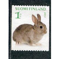 Финляндия. Кролик