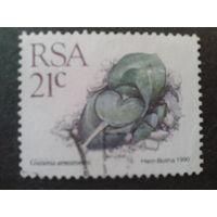 ЮАР 1990 стандарт, камнеломка