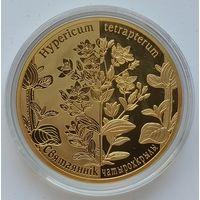 Зверобой четырехкрылый, 20 рублей 2013, серебро, Ag 925, #BelCoinArt, позолота