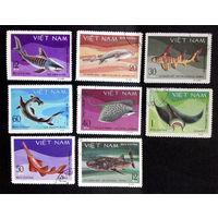 Вьетнам 1980 г. Рыбы. Акулы и скаты. Фауна, полная серия из 8 марок #0220-Ф1P51