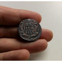 Денга / Деньга 1743 г. Елизавета I. В крыле 7 перьев, лот воз-2