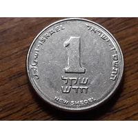 Израиль 1 новый шекель 2007