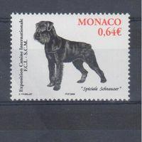 [684] Монако 2006.Фауна.Собака.