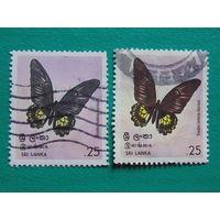 Шри-Ланка. Бабочки.
