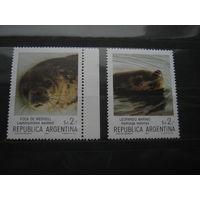 Марки - Аргентина фауна морской котик 1983