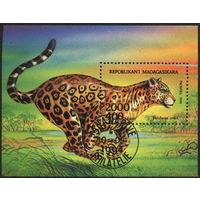 Кошки. Мадагаскар. 1994. Блок. Леопард. Гаш.