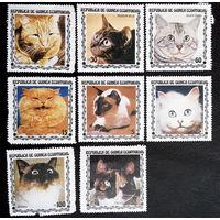 Экваториальная Гвинея 1978 г. Кошки. Животные. Фауна, полная серия из 8 марок. Чистая #0096-Ч1P4