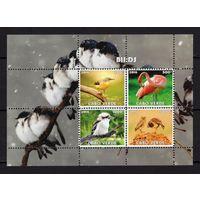 MNH - птицы - фауна - зубчатый - 2016 - Кабо-Верде