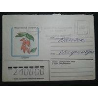 1982 барбарис прошло почту