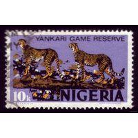 1 марка 1973 год Нигерия Гепарды 279