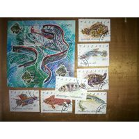 Танзания. Рыбы. Серия 7 м., 1 блок