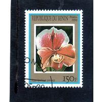 Бенин.Ми-1154.Флора. Цветы. Орхидеи. 1999