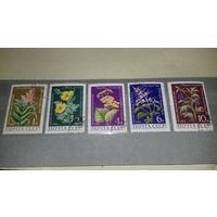 СССР 1972 Флора Лекарственные растения полная серия 5 марок
