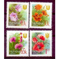 Украина Стандарт цветы