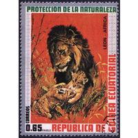 Кошки. Экваториальная Гвинея. 1974 Лев. Маркаиз серии. Гаш.