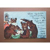 Медведи играют в карты  Юмор  Царская Россия 1906 г