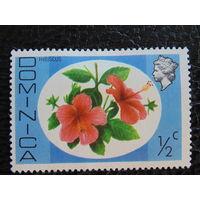 Доминика. Британская колония. Флора.