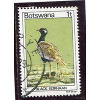 Ботсвана. Из серии Птицы. Марка 1т. Дрофа