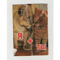 2008 Тигр и кот. Я+Ты (2)