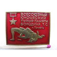 Знак. Всесоюзный юношеский турнир памяти Бородина Т.С. (г. Гомель) (латунь) 1