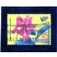 Малайзия.Малайзия. Цветы. Гибискус. 1979..