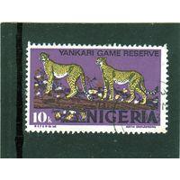 Нигерия. Ми-279. Гепард (Acinonyx jubatus).1976.
