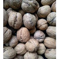 Орехи грецкие ,этого года.Кожура тонкая ,вкусные.Хранение в сухом месте.