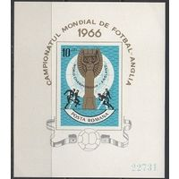 Кубок ЧМ-1966