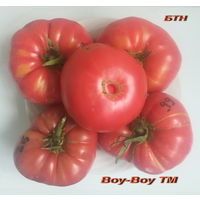 "Семена томата ""Boy-Boy TM """