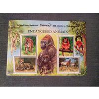 Тигры, обезьяны, дикие кошки и др, марки, фауна, Ирландия, 1998, блок