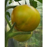 Семена томата Малахитовая Шкатулка