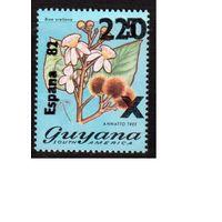 Гайана-1981 (Мих.680) **  , Спорт, ЧМ-1982 по футболу, цветы