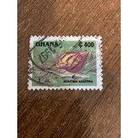 Гана 1997. Ахатина. Марка из серии