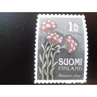 Финляндия 2010 цветы