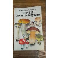 Книга Грибы лесов Белоруссии