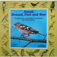 Amsel, Drossel, Fink und Star /Звуки Природы: Пение Птиц/LP,EX, Germ.