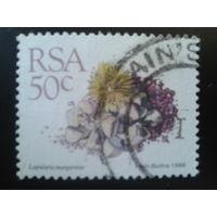 ЮАР 1988 стандарт, камнеломка