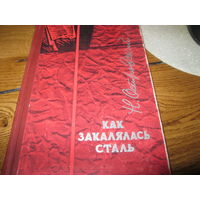 Книга Н.Островский