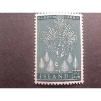 Исландия 1957 береза