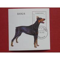 Танзания 1993г. Собаки.