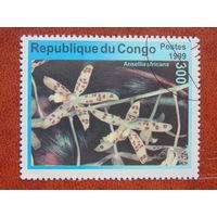Конго  1999г. Флора.