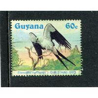 Гайяна. Рождество 1982