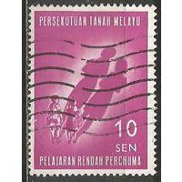 Малайзия(Федерация). Бесплатное начальное образование. 1962г. Mi#29.