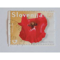 Словения 2009г. Флора