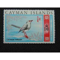 Британские Каймановы острова 1969 г. Дрозд.