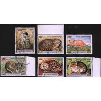 Кошки. Камбоджа. 1996. Дикие кошки, редкие виды. Полная серия. Гаш.