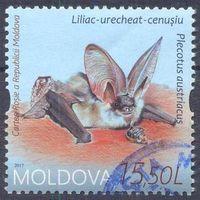 Молдова фауна